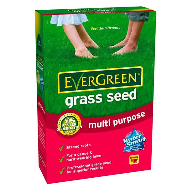 Evergreen Grass Seed 210g