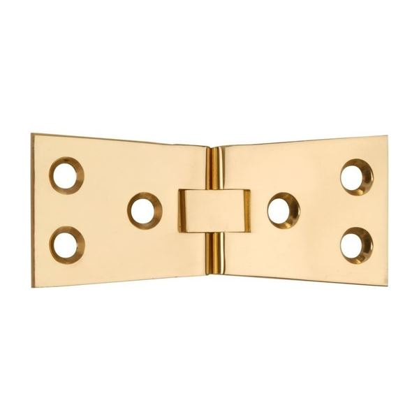 Centurion Counter Flap Hinge