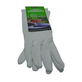 Gloves - Budget Cotton - Medium - (GW093)